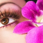 istock-close-up-with-pink-orchid-aug-09